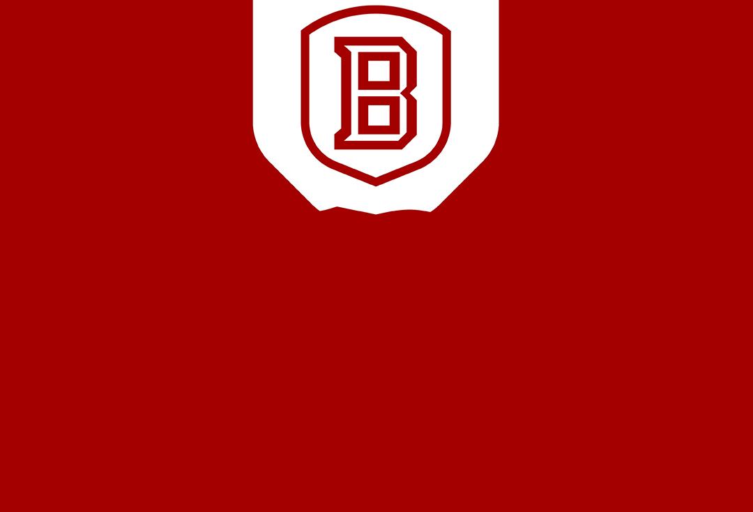 bradley university application essay